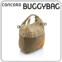concord-buggy